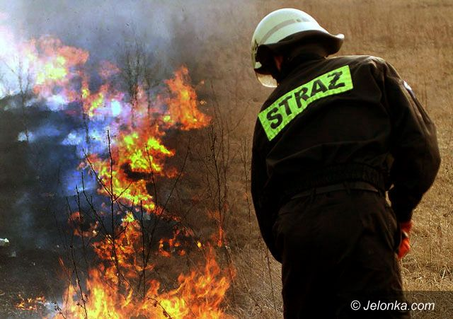 Jelenia Góra: Pożar za pożarem na nieużytkach