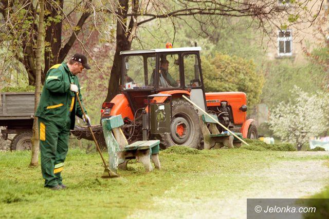 JELENIA GÓRA: Akcja trawa – ulga dla alergików