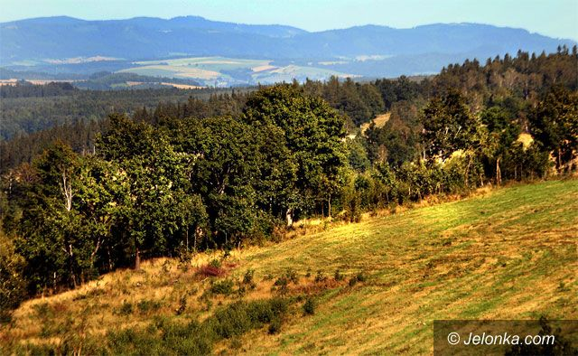REGION JELENIOGÓRSKI: Lasy zakazane, choć to nie wskazane