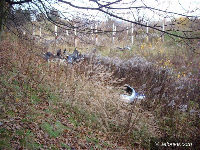 JELENIA GÓRA: Dziki szrot przy boisku