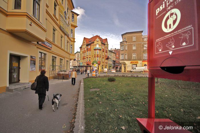 JELENIA GÓRA: Stacja obsługi psich kup na placu Niepodległości