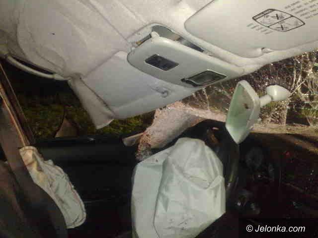 REGION: Zderzenie auta z… koniem