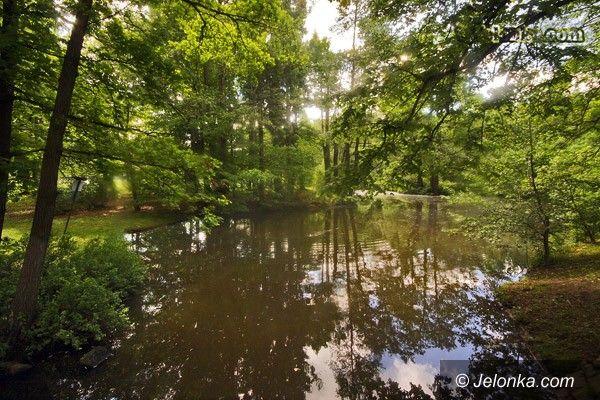 JELENIA GÓRA: Aktywna turystyka i lepszy Park Norweski
