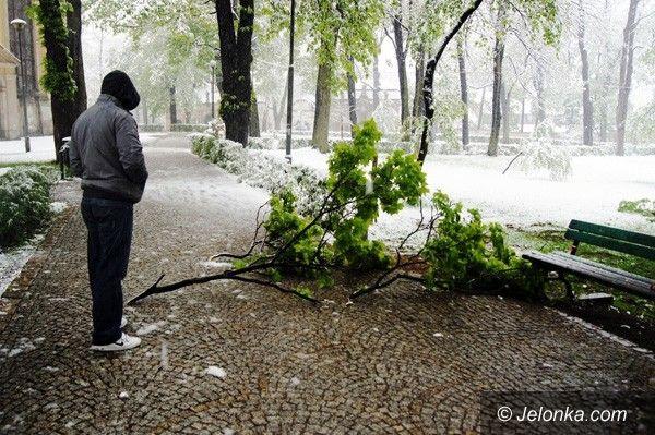 """REGION: Po wiosennym ataku zimy. Sytuacja wraca do """"normy"""""""