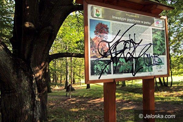 JELENIA GÓRA: Inwazyjni wandale na Wzgórzu Kościuszki