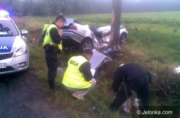 Lwówek Śląski/region: Tragiczny wypadek pod Chmieleniem – dwie osoby nie żyją