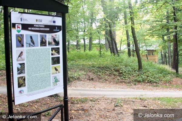 Jelenia Góra: Park Kościuszki z nowym wizerunkiem