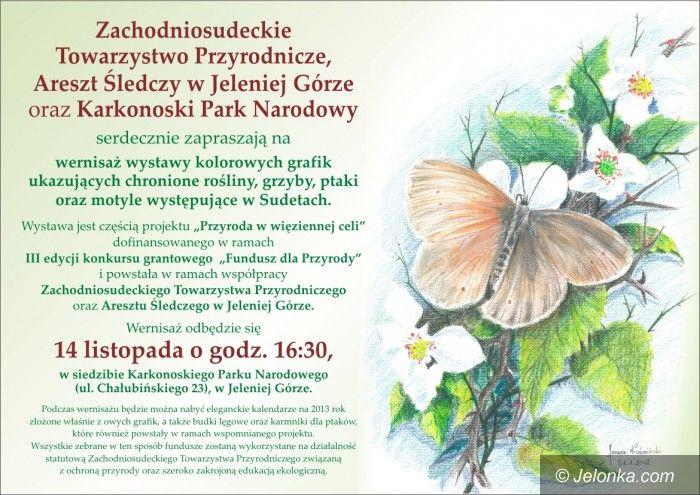 Jelenia Góra: Przyroda w grafice – wernisaż prac osadzonych w areszcie śledczym