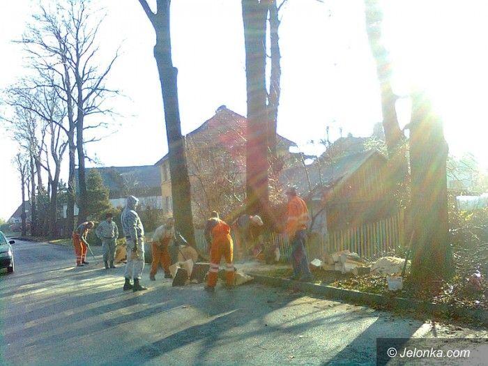 Jelenia Góra/Sobieszów: Awantura przy wycince chorych drzew przy ul. Łazienkowskiej
