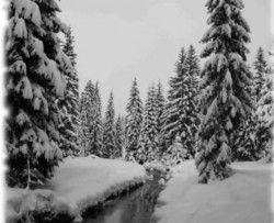 Szklarska Poręba: Rekord Tomasza Czaplickiego kajakiem po śniegu