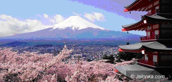 Jelenia Góra/Tokio: Rafał Majda leci do Japonii na Światowy Turniej Karate
