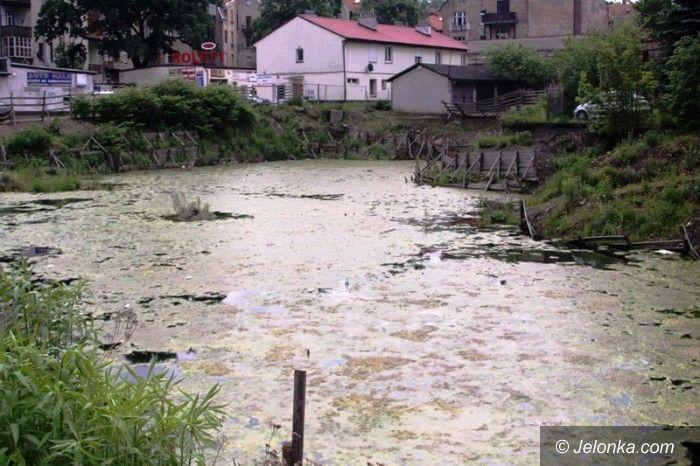 Jelenia Góra: Czy ta wielka dziura w centrum miasta w końcu zniknie?