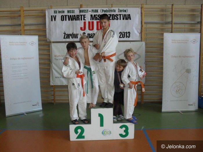 Żarów: Młodzi judocy powalczyli w Żarowie