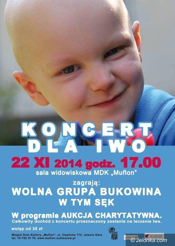 Jelenia Góra: Koncert dla Iwo już jutro!