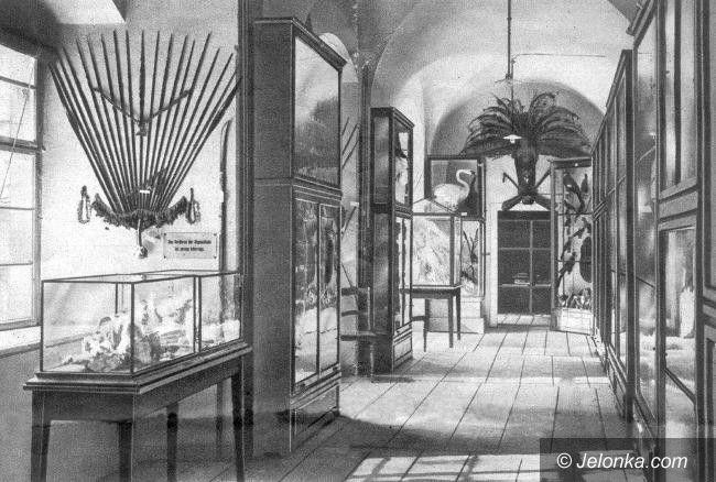 Jelenia Góra: Muzeum Przyrodnicze, jak feniks z popiołów