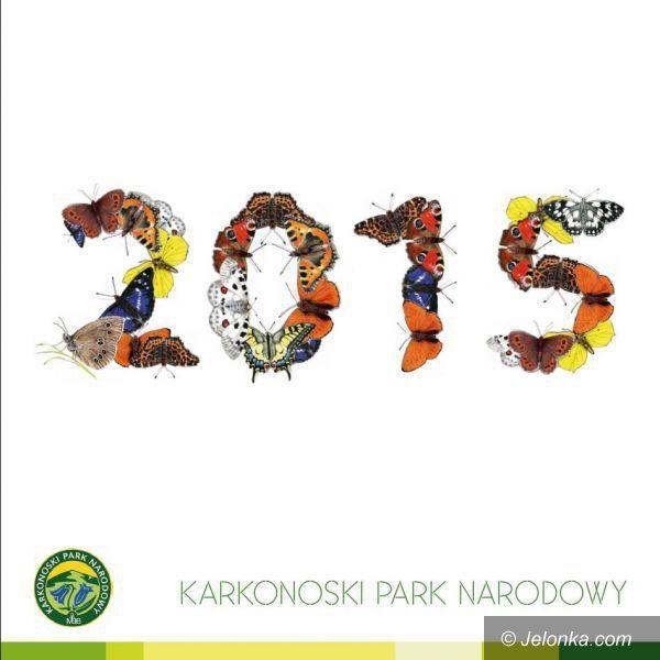 Region: Rok Motyli Karkonoskich