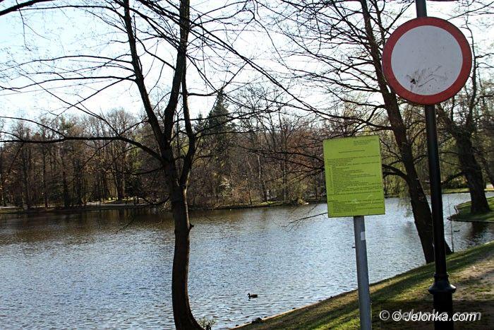 Jelenia Góra: Czerwonka zasilająca parkowe stawy do modernizacji