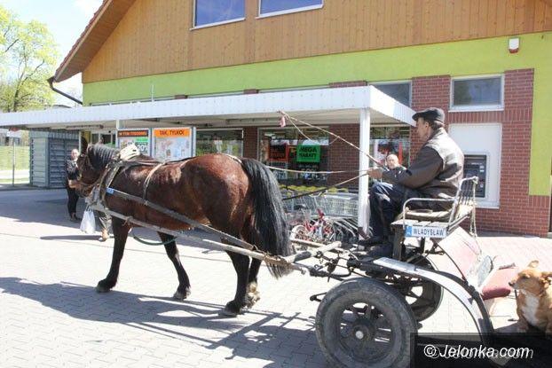 Jelenia Góra: Koń najlepszym przyjacielem… kierowcy
