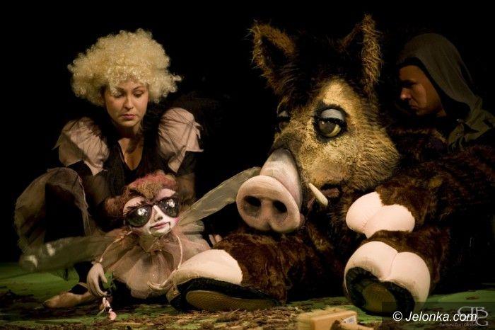 Jelenia Góra: Sukces Zdrojowego Teatru Animacji