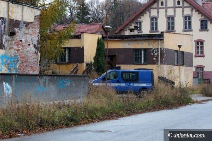 """Jelenia Góra: Bezdomni z """"Sudetów"""" dewastują działki?"""