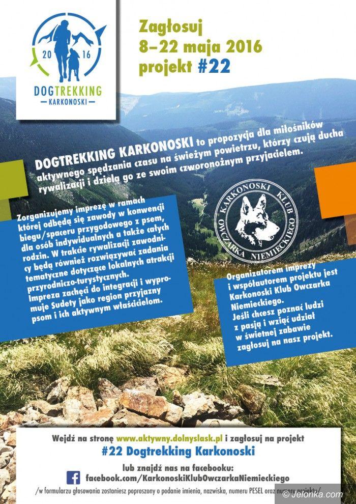 Region: Zagłosuj na Dogtreking Karkonoski
