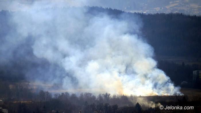 Region: Mniej pożarów traw za sprawą pogody