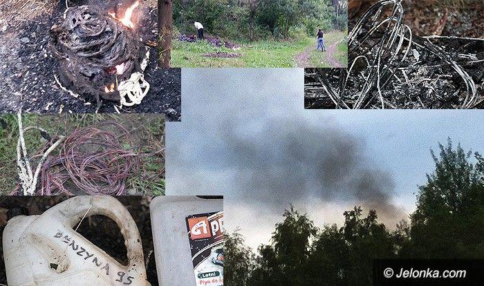 Jelenia Góra: Palą kable w lesie przy Granicznej, ale smród!