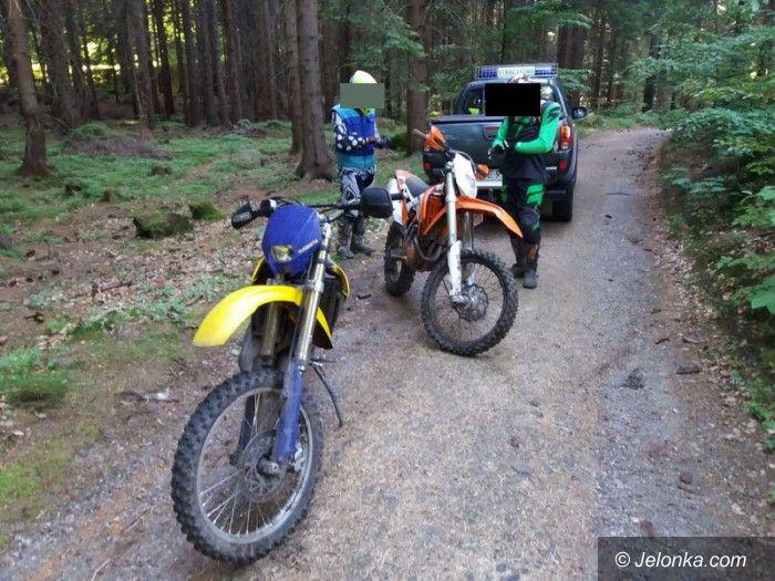 Region: Policja i straż leśna przeciwko nielegalnym rajdom