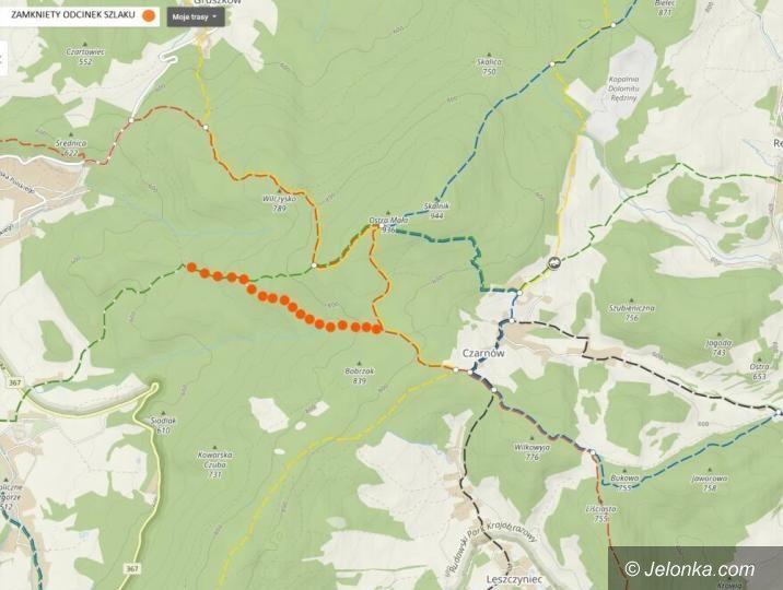 Region: Nadleśnictwo (czasowo) zamknęło szlak