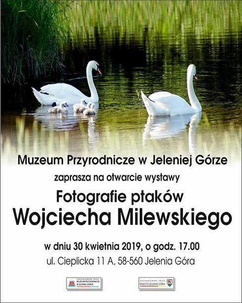 Jelenia Góra: Już jutro wernisaż wystawy fotografii Wojciecha Milewskiego