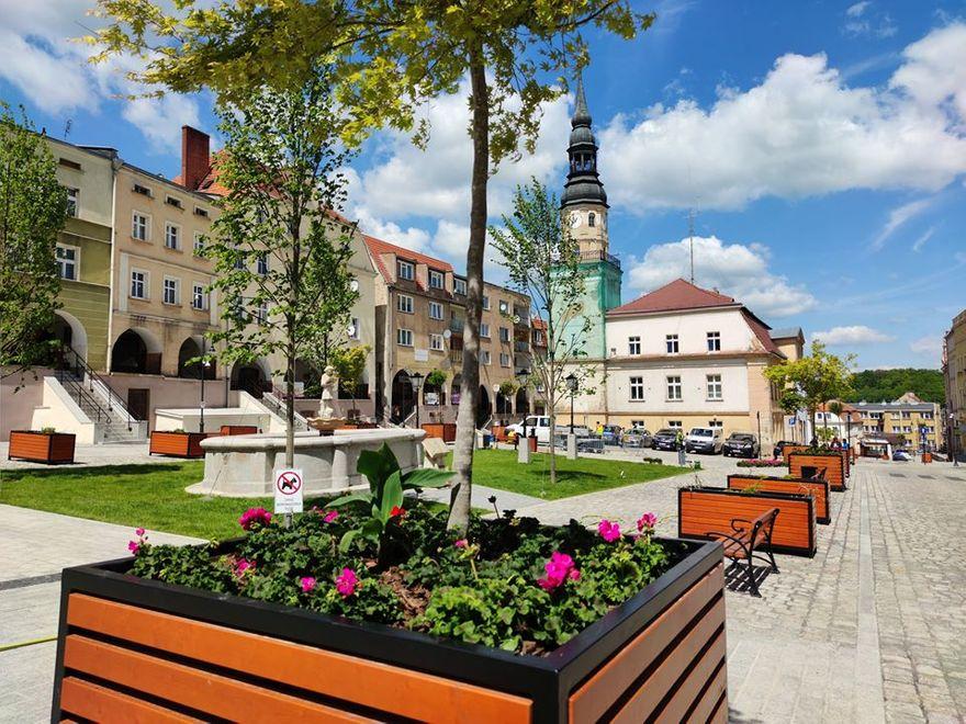 Bolków: Ukwiecenie bolkowskiego rynku