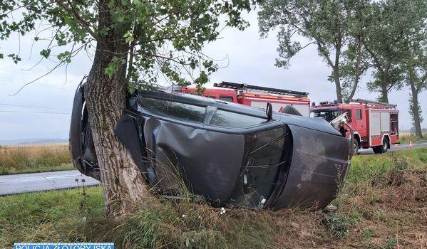 Złotoryja: Samochód uderzył w drzewo