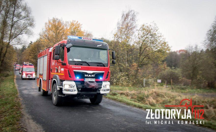 Gmina Zagrodno: Świąteczna defilada