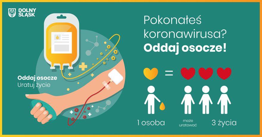 Region: Potrzebne osocze dla chorych na Covid–19