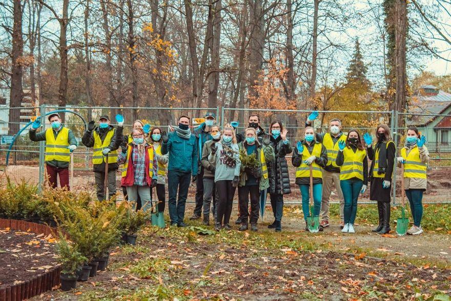 Jawor: Rośliny upiększą park