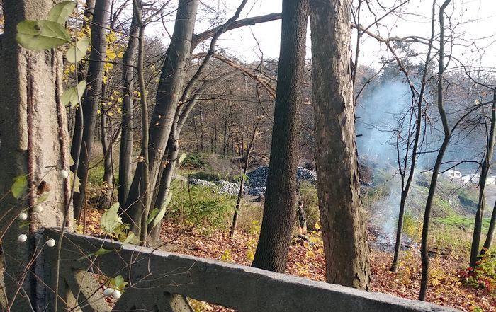 Jelenia Góra: MPGK może palić odpady?