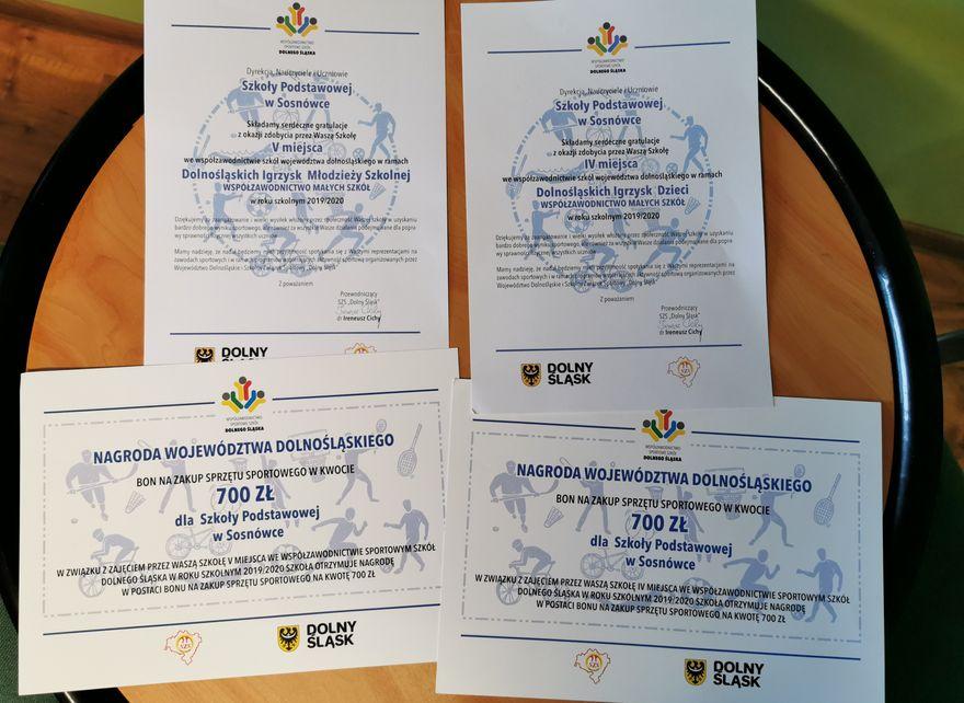 Sosnówka: Sportowy sukces podstawówki w Sosnówce