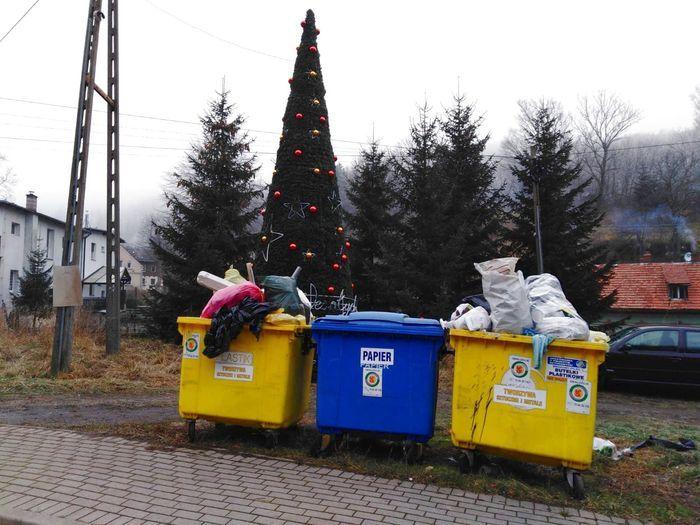 Jelenia Góra: Choinka przy śmietniku