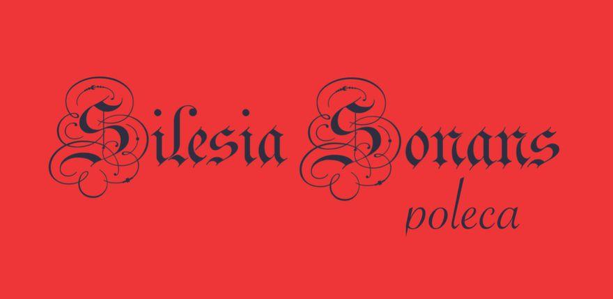 Jelenia Góra: Silesia Sonans poleca