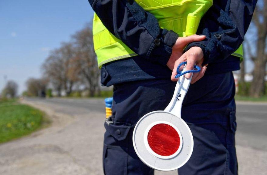 Ubocze, Gryfów Śląski: Prowadzili mimo zakazu