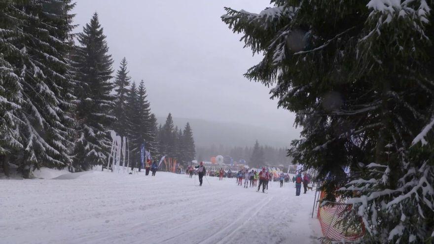 Jelenia Góra: Jaki będzie Bieg Piastów?