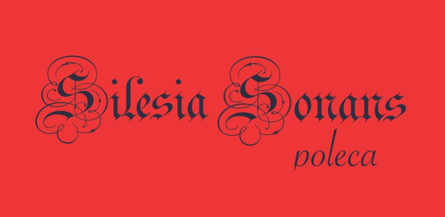 Jelenia Góra: Silesia Sonans poleca (6)