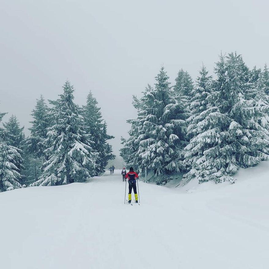 Polana Jakuszycka: Pogoda na biegówki