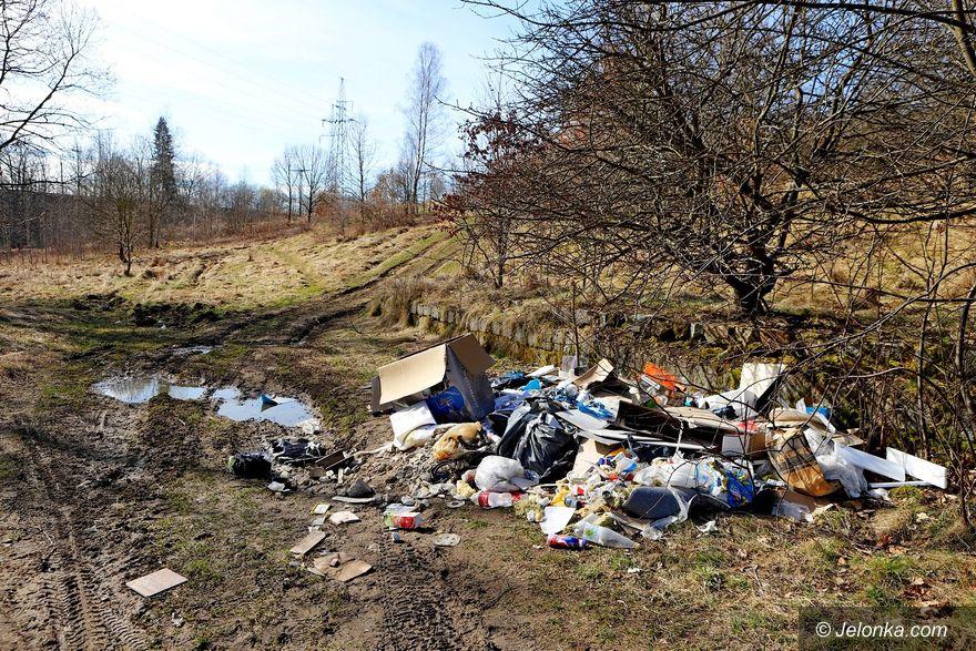 Jelenia Góra: Czyje odpady na Rakownicy?