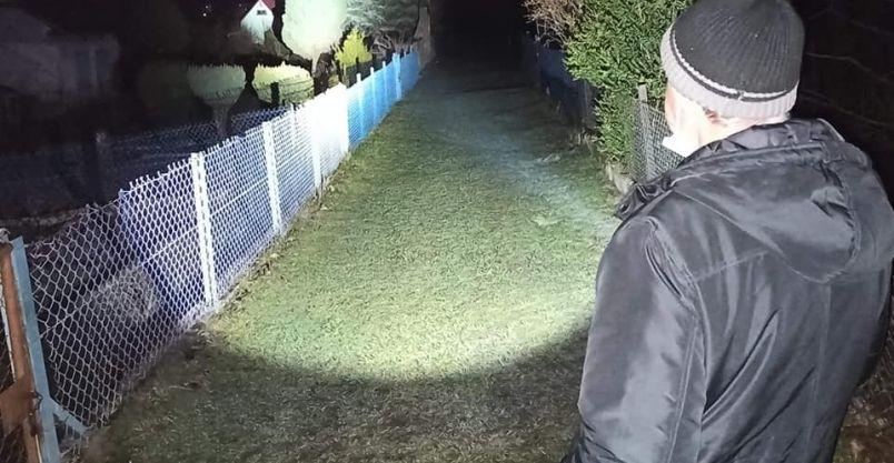 Złotoryja: Nocne patrole