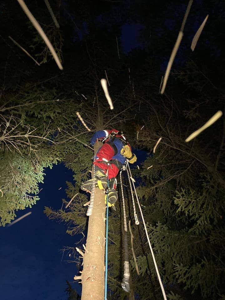 Powiat: Paralotniarz na drzewie