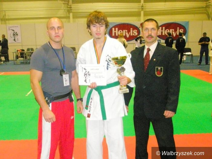 Arad: Sukces karateków