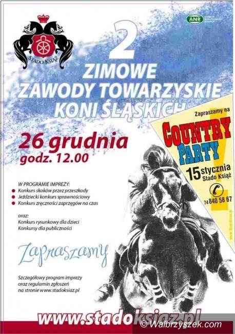 Wałbrzych: Już jutro zawody towarzyskie koni śląskich
