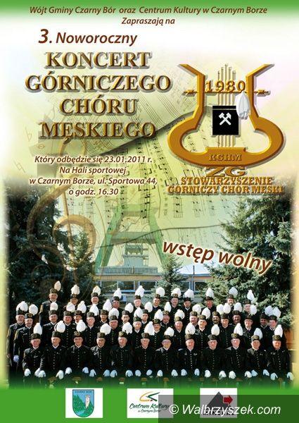 REGION, Czarny Bór: Atrakcyjne koncerty w Czarnym Borze