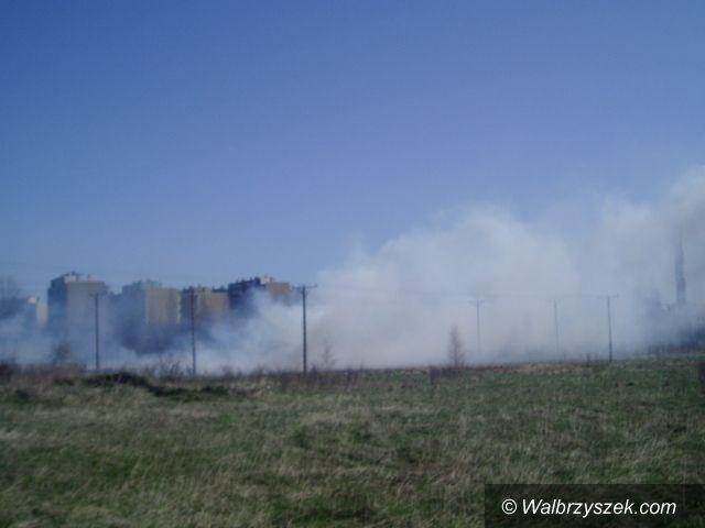 Wałbrzych/Szczawno-Zdrój: Ogromny pożar traw na granicy Wałbrzycha i Szczawna